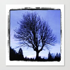 WinterMorning Canvas Print