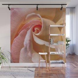 Peach Rose Wall Mural