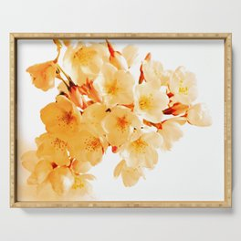 WARM BLOSSOMS Serving Tray