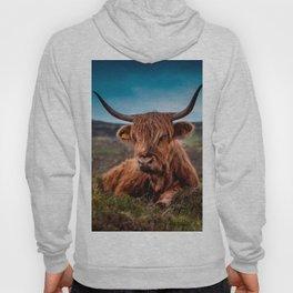 Scottish Highland longhorns Rancher Hoody