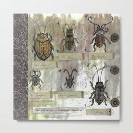 The Collector's Notebook: Beetles Metal Print