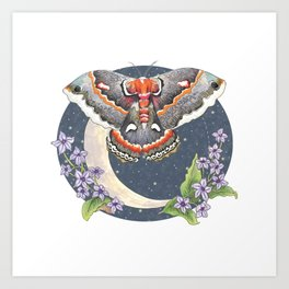 Nocturnal Moth Moon Art Print