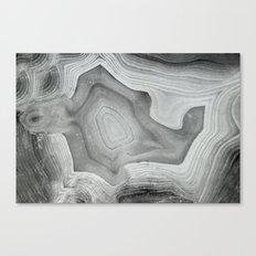 MINERAL MONOCHROME Canvas Print