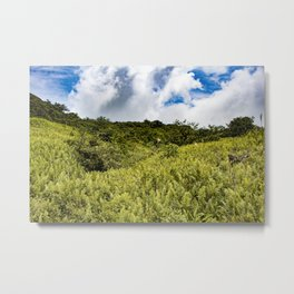 Beautiful Blue Sky Filled with Clouds of the Fern Covered Side of Mombacho Volcano, Nicaragua Metal Print
