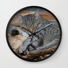 Cats-Pipo Wall Clock