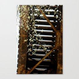 Under railroads Canvas Print