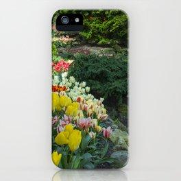 Technicolor Tulips iPhone Case