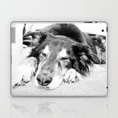 Tired Old Dog Laptop & iPad Skin