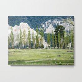 Monets garden Metal Print