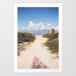 The Beach Path Art Print