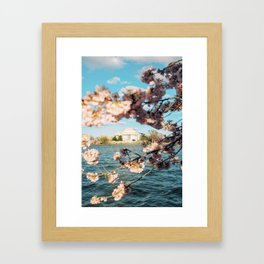 Jefferson Memorial 4 Framed Art Print