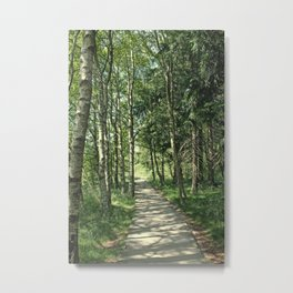 walk in the bog Metal Print