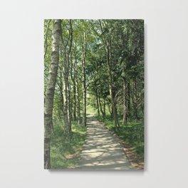 walk in the bog Metal Print