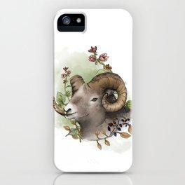 The Mountain Sheep iPhone Case