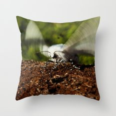 Ready For Take-Off Throw Pillow