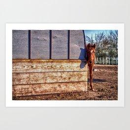 Hidden Horse Art Print