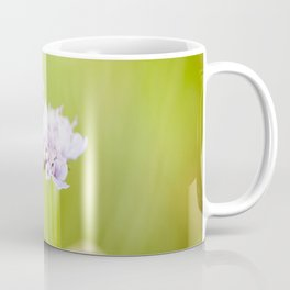 Butterfly on a flower Coffee Mug