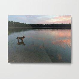 silver lake reflection Metal Print