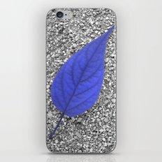 blue leaf IV iPhone & iPod Skin