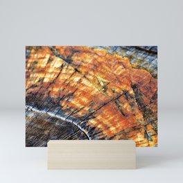 Macro Tree Stump Ring Arc Mini Art Print