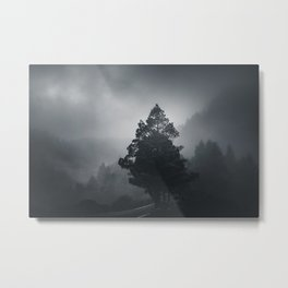 Dark woods 6 Metal Print