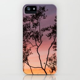 Sonoran Sky at Sunset iPhone Case