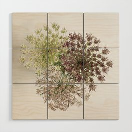 Dill Weed Flowers Wood Wall Art
