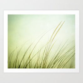 Beach Grass Photography, Calming Coastal Green Art, Zen Photo, Seashore Seaside Art Art Print
