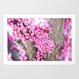 Bark Flowers Art Print