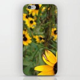 Flower Weather. iPhone Skin