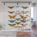 Vintage Scientific Illustration Of Colorful Butterflies by enshape