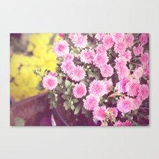 Vintage - Flower Pots Canvas Print