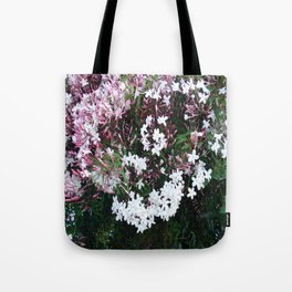 Beautiful Jasmine Flowers In Full Bloom  Tote Bag