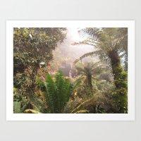 Cloud Forest Art Print