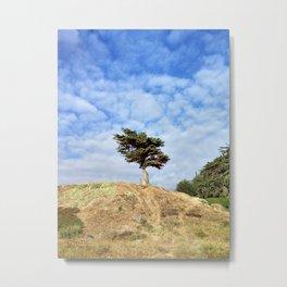 tree to tree Metal Print