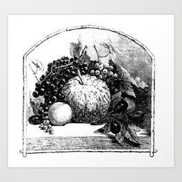Fruits of Summer Art Print