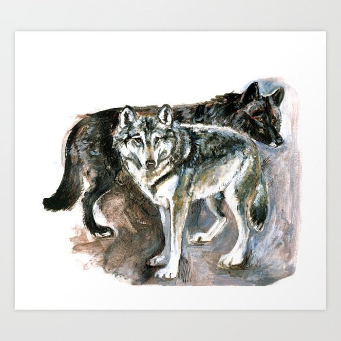 Canadian Wolf Realistic Art Print