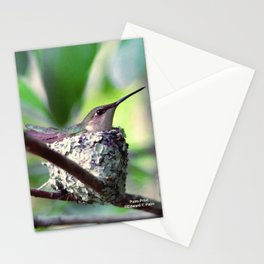 Mother Hummingbird  Stationery Cards