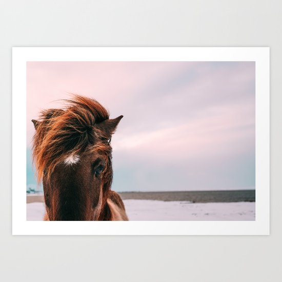 Horse #sunset Art Print