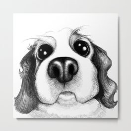 Sketch of a Spaniel who wants his belly rubbed! Metal Print