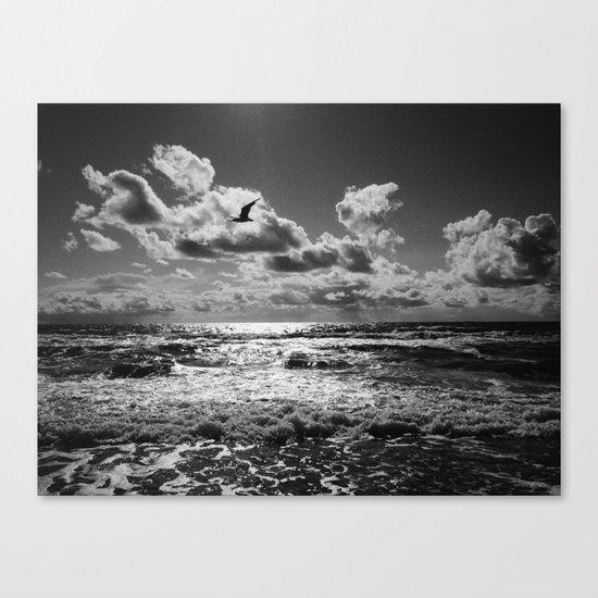 Seagull over sea Canvas Print