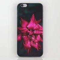 yin yang iPhone & iPod Skins featuring Yin // Yang by BURNEDINTOMYHE∆RT♥