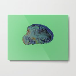 Agate topography (first in a series) Metal Print