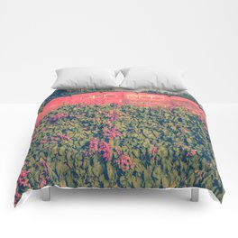 Simplicity and charm  Comforters