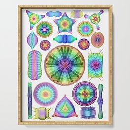 Ernst Haeckel Rainbow Diatoms Serving Tray