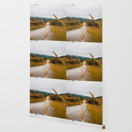 The Roadside Path (Color) Wallpaper