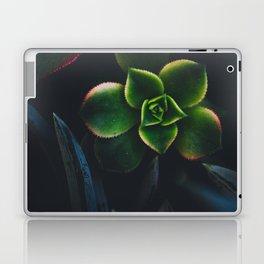 The Succulent Garden 2 Laptop & iPad Skin