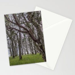 Madrone Forest Stationery Cards