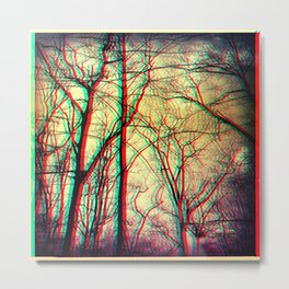 3-d vision Metal Print