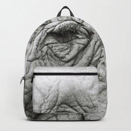 Eye of Wisdom Backpack